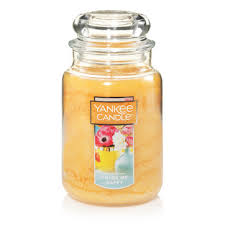 color of happy color me happy large classic jar candles yankee candle