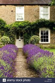 home design companies front doors front door design the front door company in