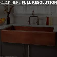 Kitchen Sink Protector by Sink Big Kitchen Sinks Shocking U201a Marvelous Large Kitchen Sink