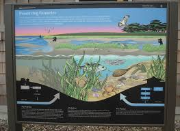 national seashore and visitor u0027s center at salt pond