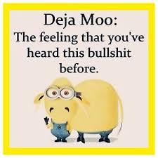 Moo Meme - 4 x4 flexible fridge magnet silly meme funny minion humor deja moo