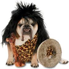 Dog Halloween Costumes Adults 60 Creative Dog Halloween Costumes Ideas