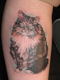 animal kitten tattoo image galleries animal kitten tattoo gallery