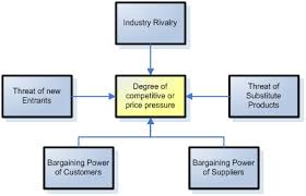 strategic leadership and the industry environment analysis