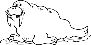 walrus clip art gallery clipartpost