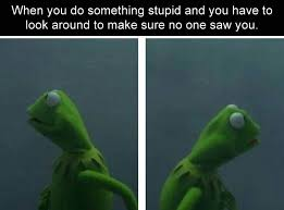 Looking Around Meme - funny pictures of the day 39 pics funny pictures humor and kermit