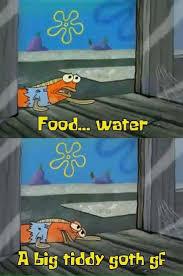 Titi Meme - food water a big tiddy goth gf goth gf know your meme
