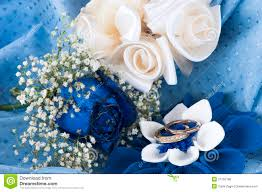 Blue Wedding Rings by A Blue Roses And Wedding Rings Royalty Free Stock Photo Image
