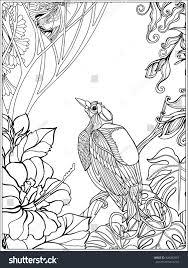 wildlife coloring book tropical wild birds plants tropical garden stock vector 428382967