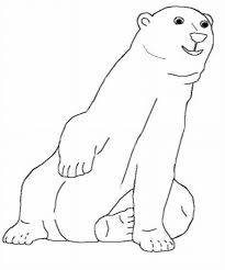 polar bear coloring polar bear coloring book polar bear