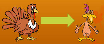 lesson of the week pluck the turkey thanksgiving trivia fulbridge