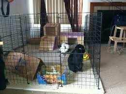 Diy Indoor Rabbit Hutch Indoor Rabbit Cage Diy Do It Your Self