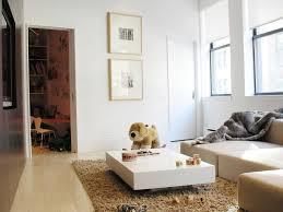 Designer Sofa Throws Phenomenal Decorating Long Narrow Living Room Living Room Window