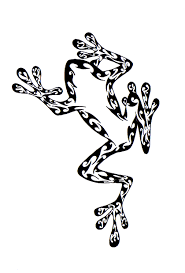 tribal water frog drawing photo 2 photo pictures and