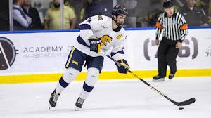 bentley college hockey hockey completes homestand versus no 18 air force canisius college