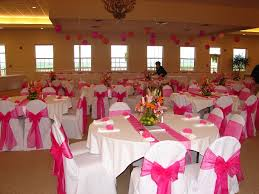pink chair sashes chair covers of lansing doves in flight decorating