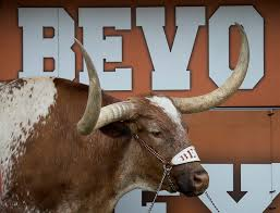 Texas Longhorn Home Decor 193 Best Texas Longhorns Images On Pinterest Hook Em Horns
