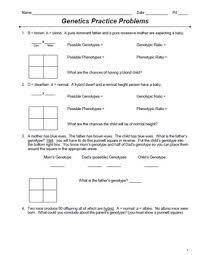 genetics monohybrid punnett square practice packet  problems with  from teacherspayteacherscom