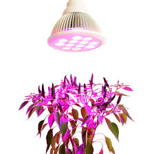 led grow lights for indoor plants china factory