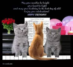 template free birthday ecards singing cats with free best 25 happy birthday cards online ideas on happy