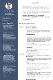 It Specialist Resume Examples It Specialist Cv Template 28 Images It Specialist Exemple De