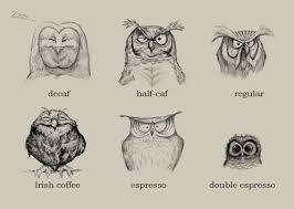 uncategorized owl u0027s portfolio