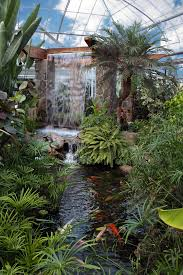rainy day visit an indoor water feature water feature and pond