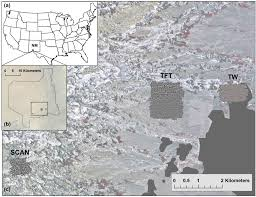 Co Surface Management Status Canon City Map Bureau Of Land by Remote Sensing Free Full Text Multispectral Remote Sensing
