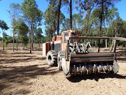 treemuncher equipment