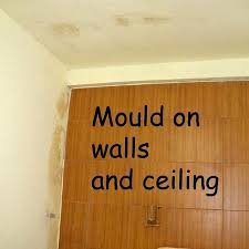 Mould Bedroom Ceiling Mould Bedroom Ceiling Iammyownwife Com