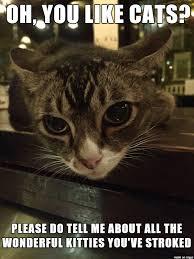 Jive Turkey Meme - pub cat don t want none of your jive turkey meme on imgur