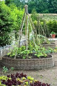 kitchen gardens design kitchen garden layouts photos gallery of best vegetable garden