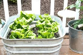 Herb Container Gardening Ideas Easy Container Gardening Herb Garden Markers Easy Container