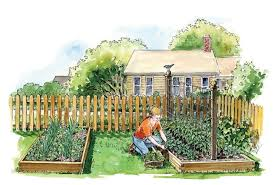 Companion Gardening Layout Organic Gardening Earth News
