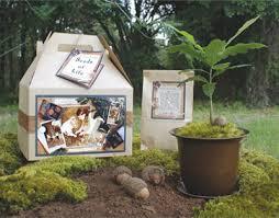 seeds of oak tree kit 8 best house warming gifts
