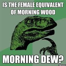 Morning Wood Meme - funny pics on twitter is the female equivalent of morning wood