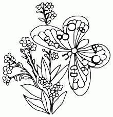 mariposa flor colorear