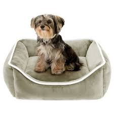 small pet beds dog beds blankets target