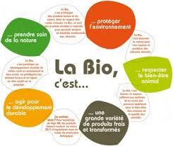 ch lexical de la cuisine 27 best ecologie climat environnement energie images on