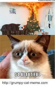 Funniest Cat Meme - funny cat memes com so beautiful httpgrumpy cat memecom meme on