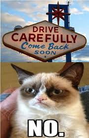 Cat Soon Meme - drive carefully come back soon no grumpy cat i want her 3