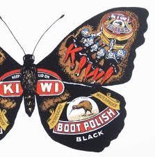 15 best butterflies images on butterflies butterfly