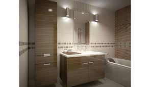 Bathroom Cabinets Modern by Design And Build Custom Bathroom Cabinets Communities