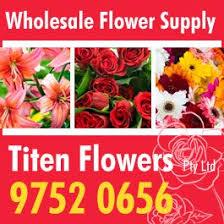 Wholesale Flowers Titen Flowers Pty Ltd Wholesale Florist 160 Old Emerald Rd