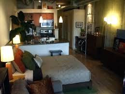 Apartment Setup Ideas Cool Studio Apartment Setups Bedroom Studio Setups New Ideas Cool