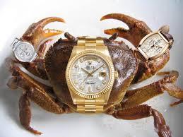 gafunkyfarmhouse this n that thursdays animal themed gafunkyfarmhouse this n that thursdays crustacean décor revisited
