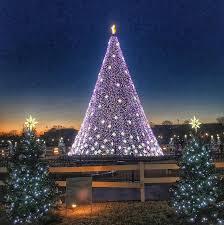 beautiful christmas trees around the world