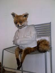 Taxidermy Fox Meme - creepy taxidermy fox album on imgur