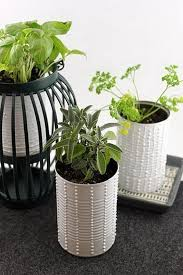 Indoor Herb Planters by Top 15 Low Budget Ideas For Creating Small Herb Gardens Indoors