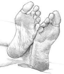 62 best anatomy of foot images on pinterest anatomy art